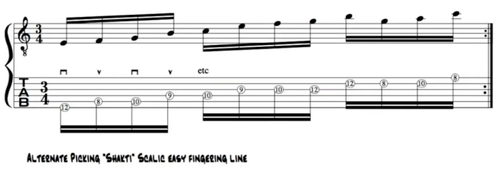 John Mclaughlin alternate picking lick